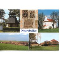 F 58720 - Neprobylice